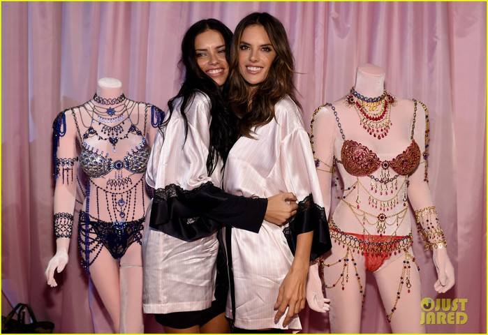 adriana-lima-alessandra-ambrosio-pose-with-their-fantasy-bras-03 (700x480, 98Kb)
