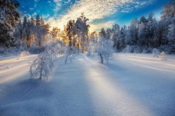 picslife.ru_krasivyie-zimnie-peyzazhi_3 (700x464, 130Kb)