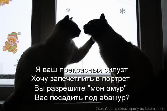 4650338_1334432590_kotomatrix02_1_ (700x466, 34Kb)