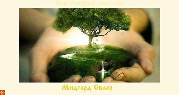 4497432_Duh_Predkov_w (600x320, 21Kb)