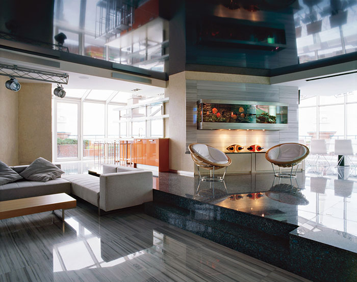 Все о стиле хай-тек в гостиной комнате (9) (700x554, 246Kb)