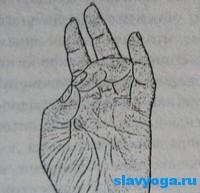 surya-mudra (200x193, 30Kb)