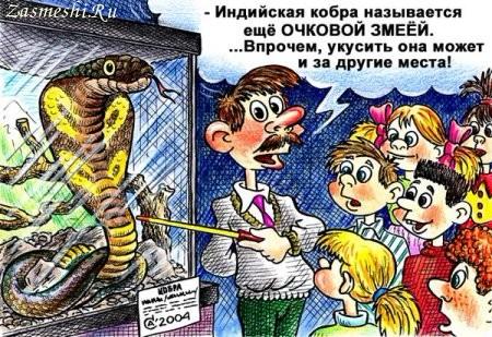 5680197_854Ochkovayazmeya (450x309, 87Kb)