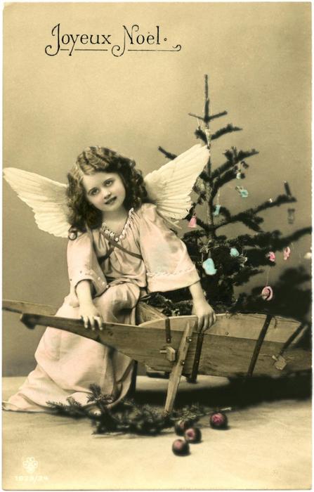 Angel-Girl-Photo-Image-GraphicsFairy-654x1024 (447x700, 295Kb)