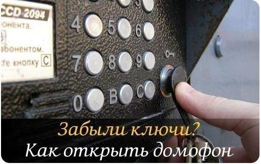 4602493_0 (515x325, 46Kb)