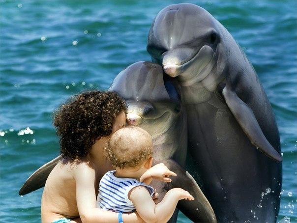 Ребенок - зеркало души родителей. (604x454, 59Kb)