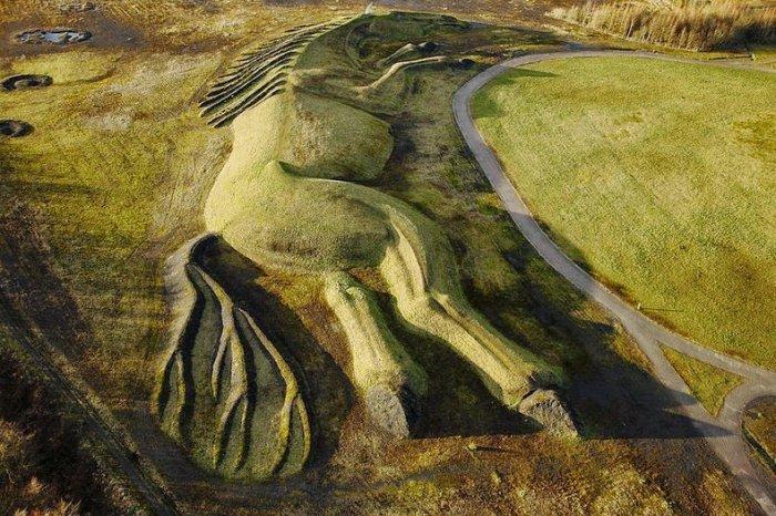 скульптура лошади из угля англия 5 (700x466, 392Kb)