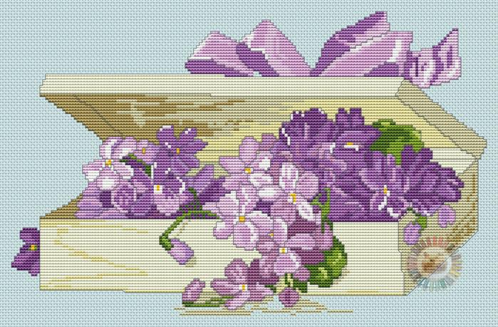 Boite violettes (700x459, 450Kb)