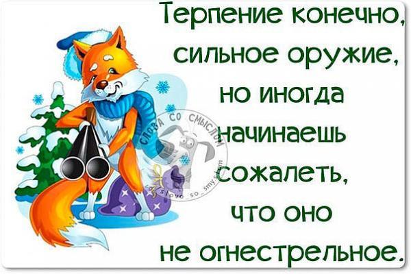 smeshnie_kartinki_141741048743 (600x400, 218Kb)