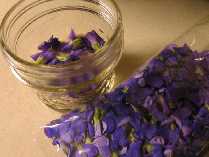 violet-sugar (681x511, 61Kb)