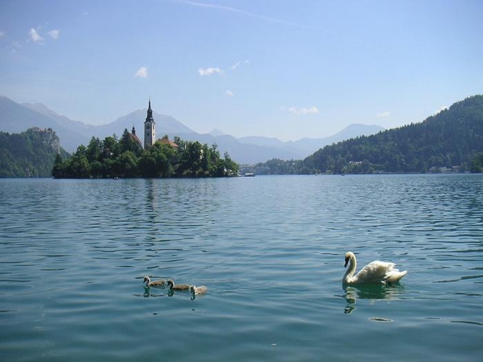 Остров Блед в Словении8 (700x524, 322Kb)