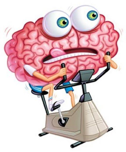 Мозг за рулём Brain-Injury (520x627, 52Kb)