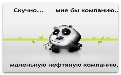 10603307_641392569305419_4297706020030707342_n (510x315, 58Kb)