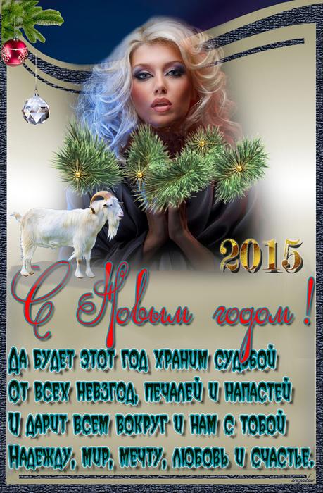 1418754879_S_Novuym_2015_godom5 (459x700, 306Kb)