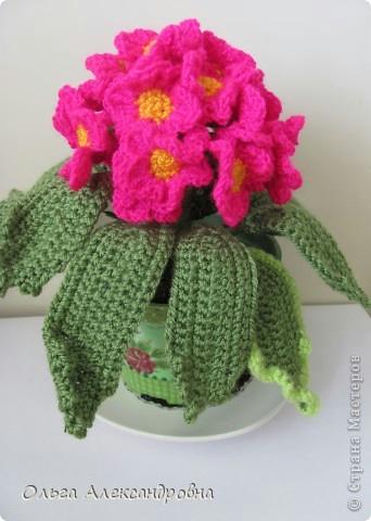 как связать цветок Хьюго Пьюго, как связать примулу, вязаная примула, вязаный цветок, схема вязания примулы, схема вязания цветка,