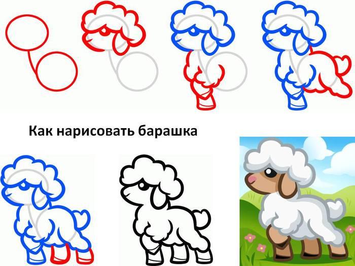 4800487_kaknarisovatbarashka (700x525, 52Kb)