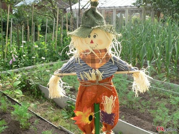 Как сделать пугало для огорода