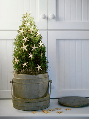 starfish-christmas-tree-pail (300x400, 86Kb)