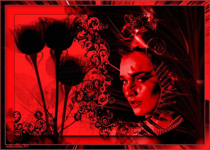 Черные-розы-эмблема... (900x644, 152Kb)