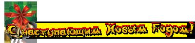 С-наступающим-нг23н (400x90, 30Kb)