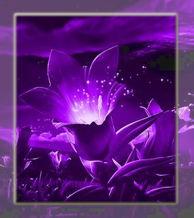 Violet_color (624x700, 267Kb)