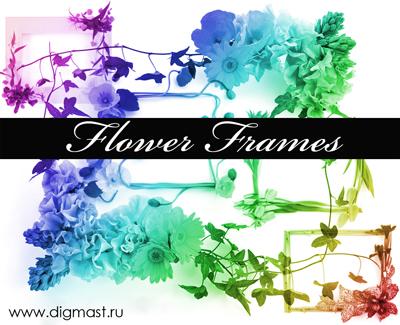 Floral_Frames_by_Lileya (400x325, 134Kb)