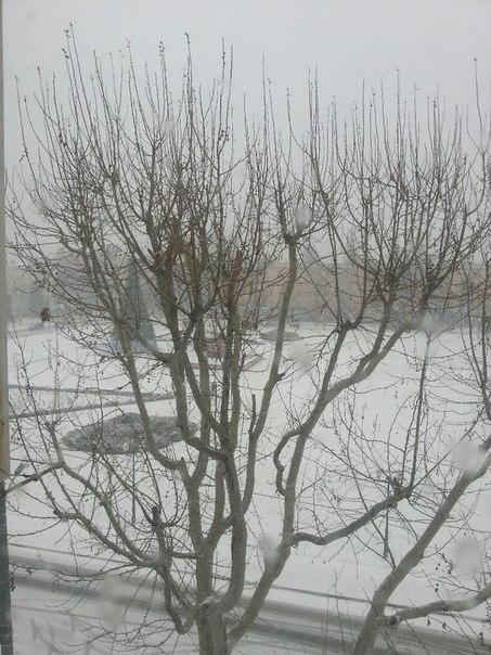 снег (453x604, 231Kb)