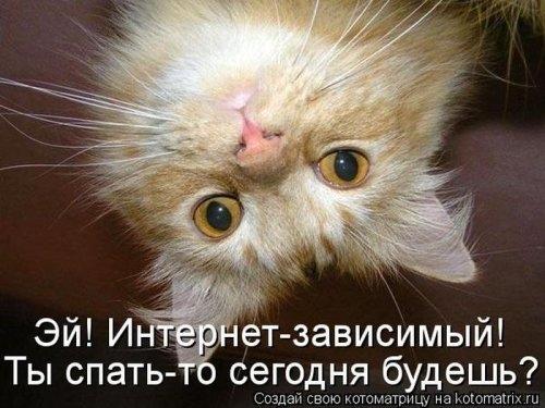 1387912433_mysli-vsluh-8 (500x375, 122Kb)