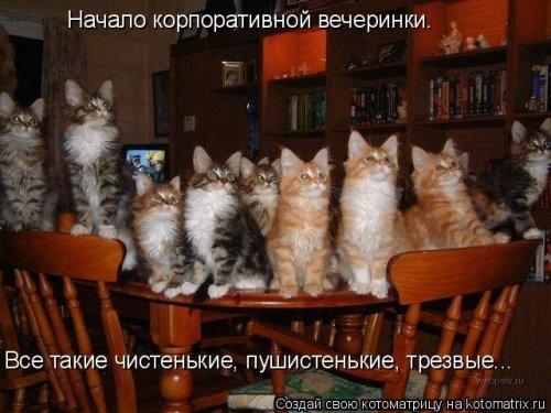 1387912457_mysli-vsluh-6 (500x375, 125Kb)
