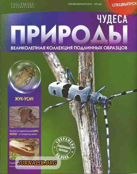 2920236_1419671143_chudesaprirody_specvypusk2 (473x600, 91Kb)