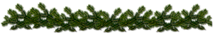 pic (4) (304x50, 28Kb)