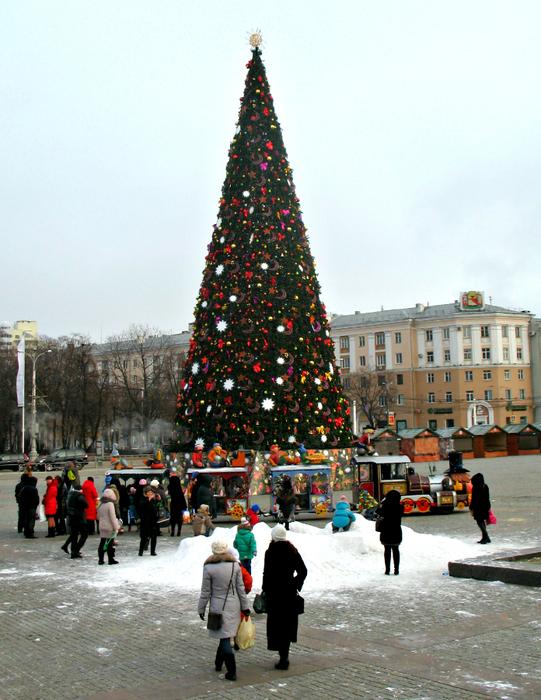 декабрь 2014 015 (541x700, 542Kb)