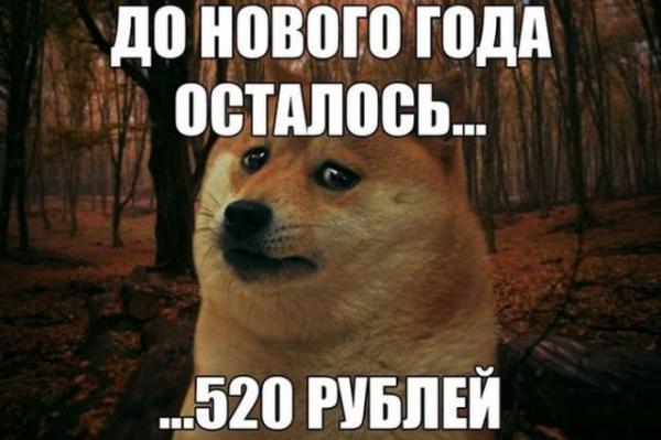smeshnie_kartinki_141935751622 (600x399, 175Kb)