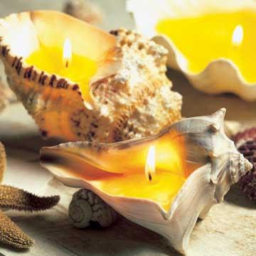свечи в ракушках/5689873_seashellcandleholder (360x360, 27Kb)