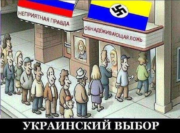 Украинский выбор (604x449, 231Kb)