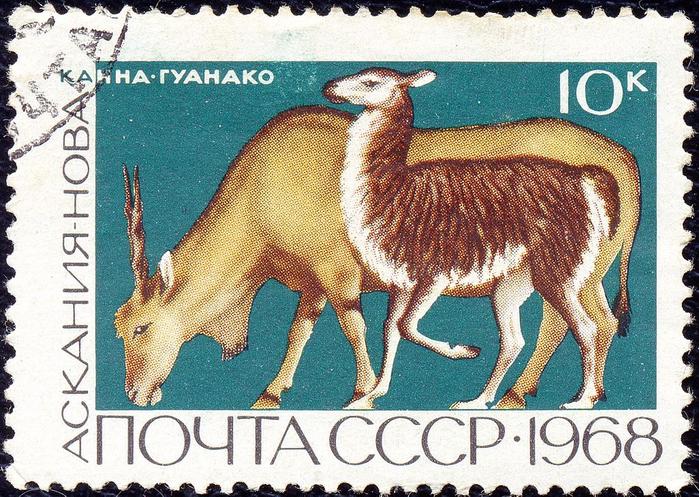 1968_CPA_3679_(1) (700x497, 573Kb)
