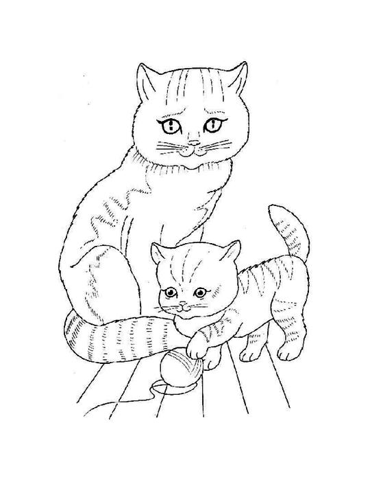 раскраски животныен и их детеныши, раскраска кошка с котенком,