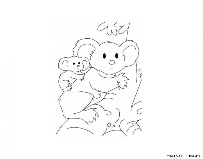 раскраски животныен и их детеныши, раскраска коала с детенышем,