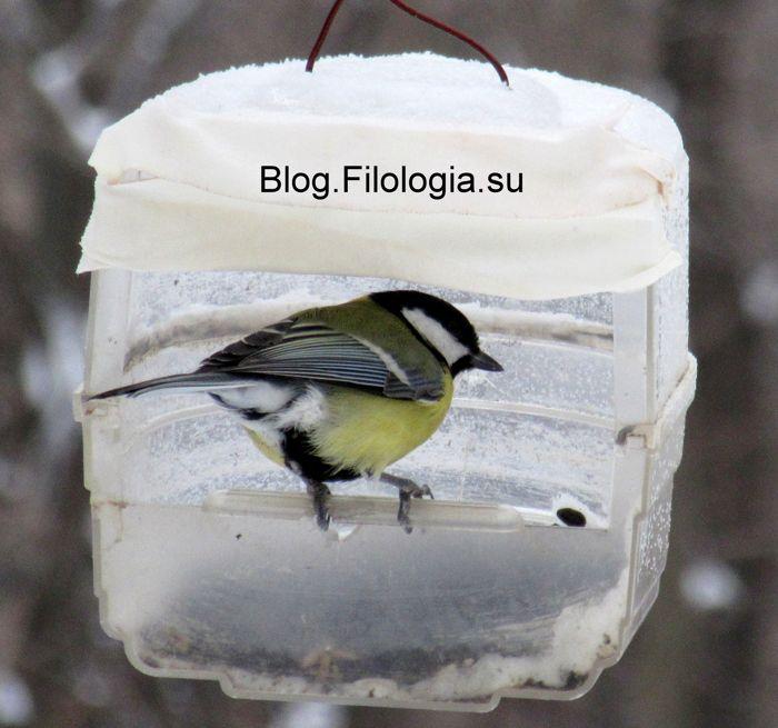 3241858_birds32 (700x655, 56Kb)