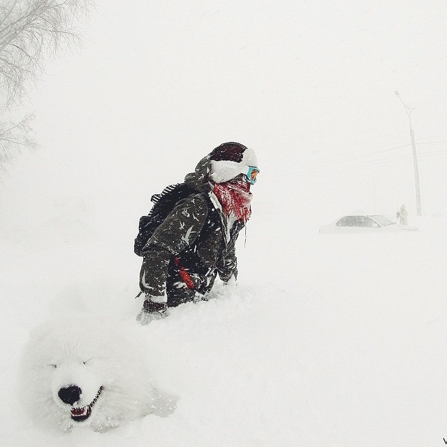 зима снежная (640x640, 180Kb)