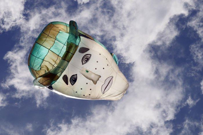 фестиваль воздушных шаров в мексике 6 (700x466, 210Kb)