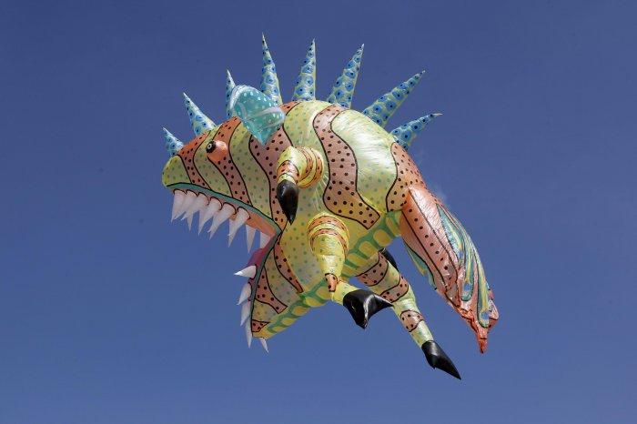 фестиваль воздушных шаров в мексике 14 (700x466, 152Kb)