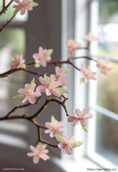 Веточка цветущей вишни из гофрированной бумаги (6) (480x700, 202Kb)