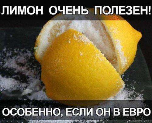 лимон (500x406, 44Kb)