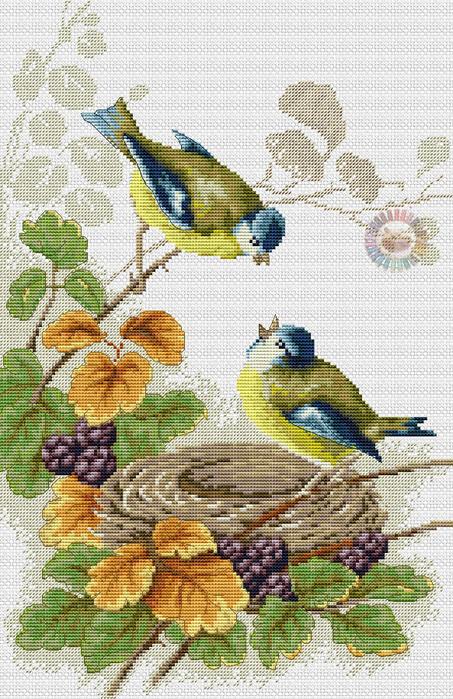 Птички у гнезда (453x700, 489Kb)