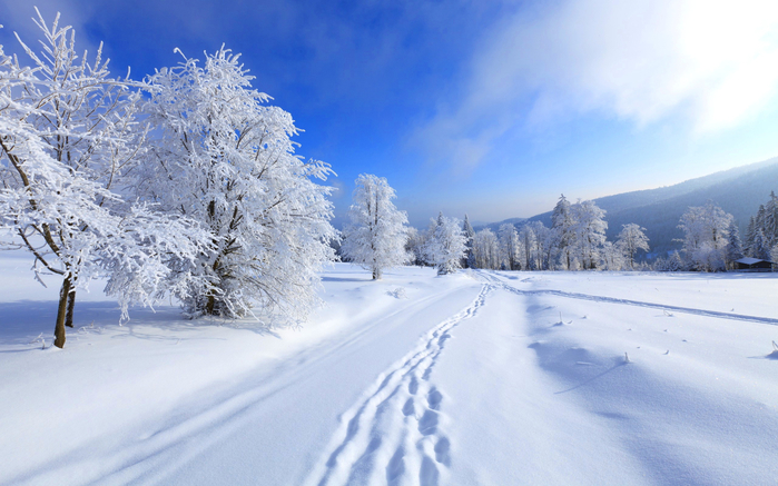 rabstol_net_winter_30 (900x637, 359Kb)