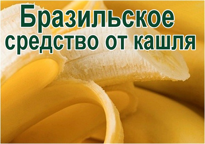 4581506_brazilskoesredstvootkashlja_1 (700x493, 75Kb)
