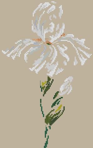 656_DMC-Iris1 (299x473, 67Kb)