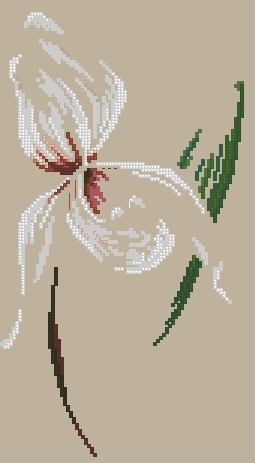 658_DMC-Orchid1 (255x463, 58Kb)
