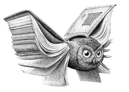 bookowl (500x356, 78Kb)